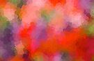 Rainbow Soup by Beth Thompson