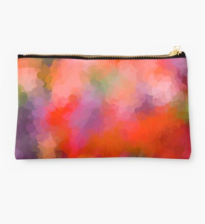 Rainbow Soup Studio Pouch
