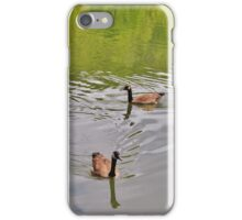 Geese in the River iPhone Case/Skin