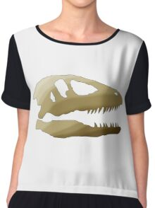 Dinosaurs Are Cool Chiffon Top