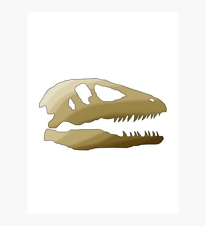 Dinosaurs Are Cool Photographic Print