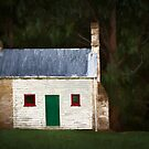 Cottage in the wood by Jan Pudney