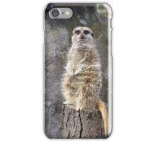 Meerkat Manners iPhone Case/Skin