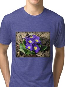 Bright and Beautiful - Sunkissed Purple Primrose Tri-blend T-Shirt