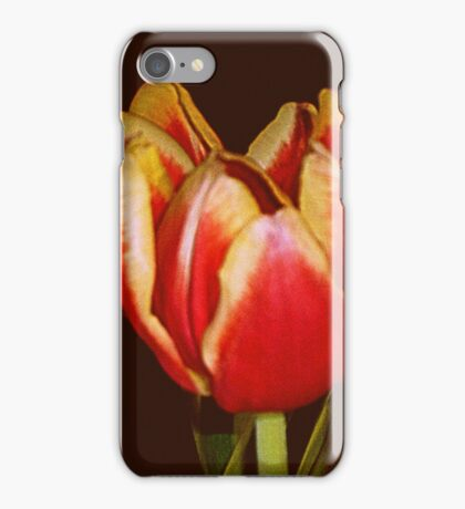 LOVELY RED AND YELLOW TULIPS iPhone Case/Skin