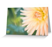 Embrace Dahlia Greeting Card