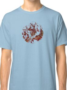 Surface of Mars Classic T-Shirt