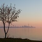 Soft, Pink Morning on the Lake Shore by Georgia Mizuleva