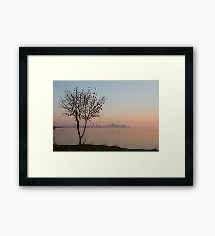 Soft, Pink Morning on the Lake Shore Framed Print