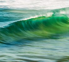 Wave Blur by Dave  Gosling Designs
