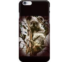Aussie Bear iPhone Case/Skin