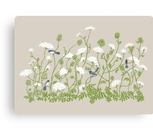 Queen Anne Lace Canvas Print