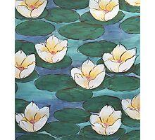 Belle Monet Photographic Print