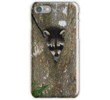 Baby Raccoon and Jesus  iPhone Case/Skin