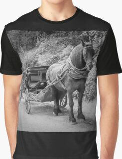 Your Carriage Awaits You Graphic T-Shirt