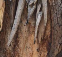 Tree Bark Sticker