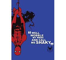 Spider-Man Poster Photographic Print