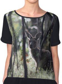 Kangaroo on Mt. Lofty, Adelaide  Chiffon Top