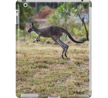 Kangaroo on Mt. Lofty, Adelaide  iPad Case/Skin