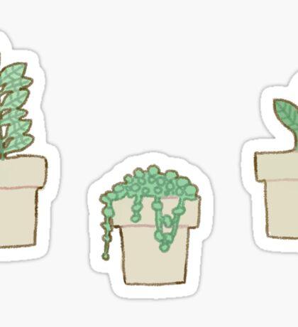 Cute Plant Stickers Sticker
