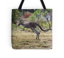 Kangaroo on Mt. Lofty, Adelaide  Tote Bag