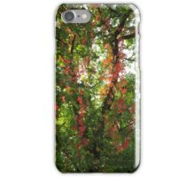 Wild Vines iPhone Case/Skin
