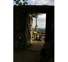 Saxon Vineyards Photographic Print