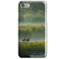 In Misty Morningland iPhone Case/Skin