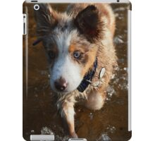 Australian shepherd puppy in the water iPad Case/Skin