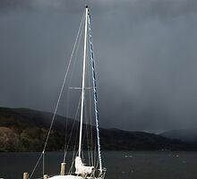 Calm Before the Storm by Nick Jenkins