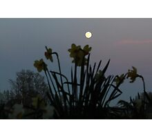 How high the moon Photographic Print