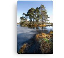 Spring morning in the lake district Cumbria Canvas Print