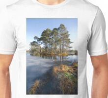 Spring morning in the lake district Cumbria Unisex T-Shirt