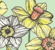 Field of Daffodils Sticker
