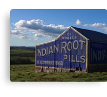 Indian Root Pill Canvas Print
