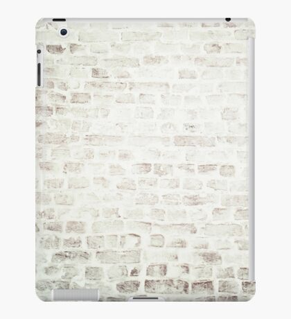 Delicately Pale iPad Case/Skin