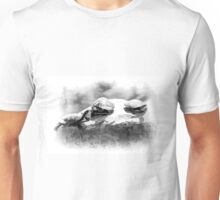 Turtle Rock Unisex T-Shirt
