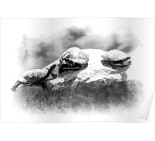 Turtle Rock Poster