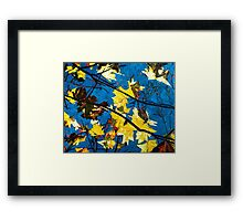 Golden Leaves II Framed Print