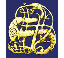 Viking dragon - Scandinavia, 11th century Photographic Print