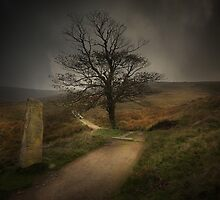 In Bronte's Footsteps by eddiej