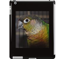 Austin iPad Case/Skin