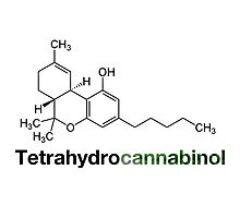 THC Tetrahydrocannabinol Chemical Formula Compound  Photographic Print