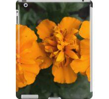 Spring Flower Series 62 iPad Case/Skin
