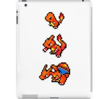 Charizard Evolution iPad Case/Skin