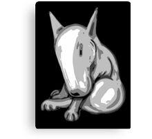 Bashful English Bull Terrier Canvas Print