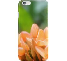 FLORAL PHASE #6 iPhone Case/Skin