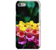 Pinks and Yellows iPhone Case/Skin