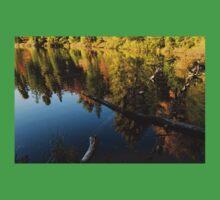 Mesmerizing Fall Reflections Baby Tee