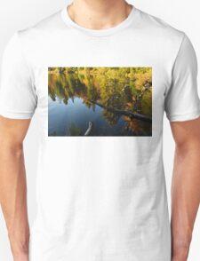 Mesmerizing Fall Reflections Unisex T-Shirt